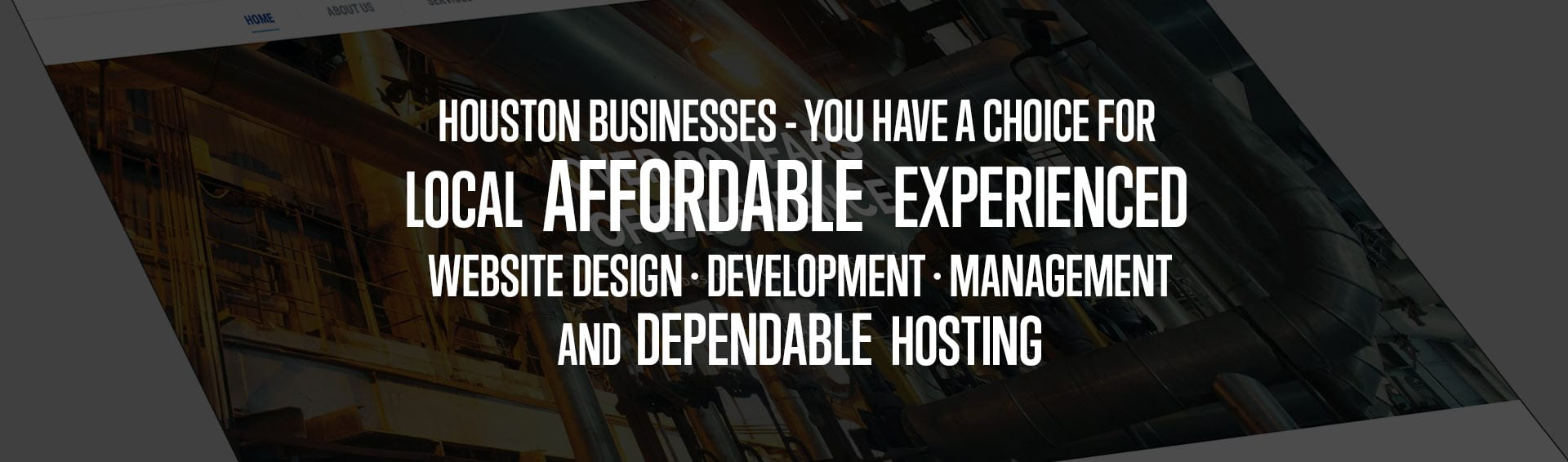 Houston businesses - you have a choice for local affordable experienced website design development management and dependable hosting